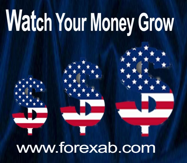 money manager forex